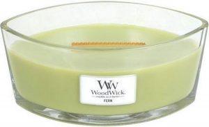WoodWick Ellipse Fern